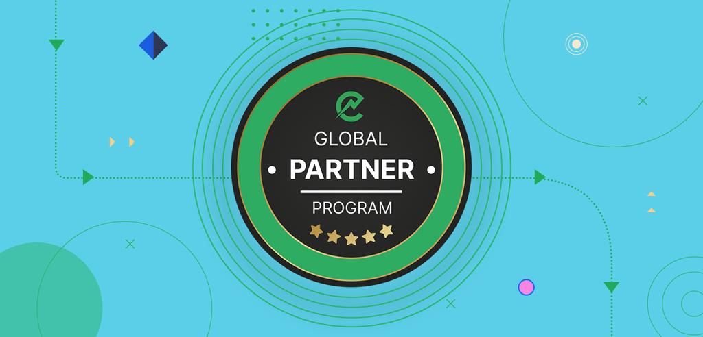 ElectroNeek Global Partnership Program Overview